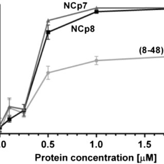 Comparison of NCp7, NCp8 or (8–48) NCp8 aggregation