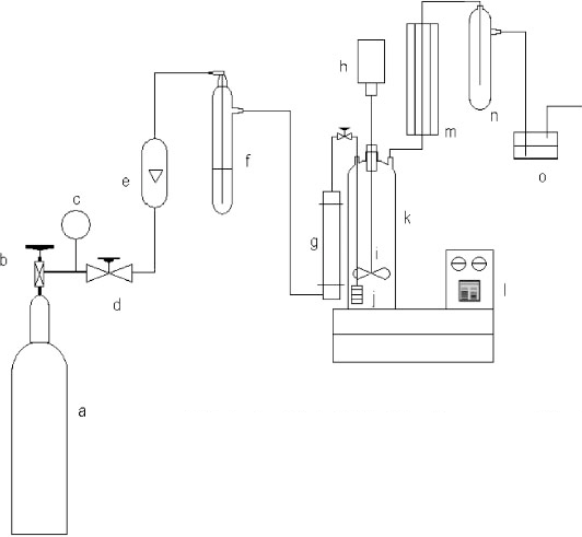 Schematic diagram of the setup: (a) chlorine gas cylinder
