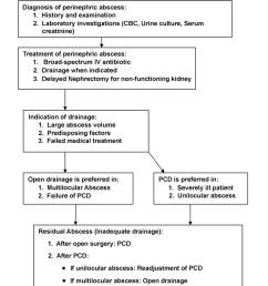 algorithm for management of perinephric abscess pcd percutaneous tube drain cbc complete [ 850 x 966 Pixel ]