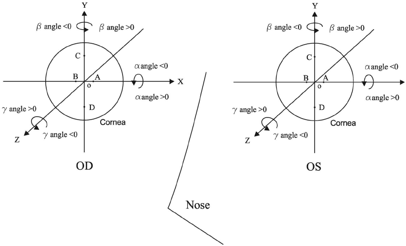 The Cartesian coordinate system of bilateral corneas