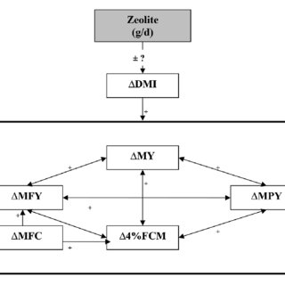 (PDF) Effects of Zeolite supplementation on dairy cow