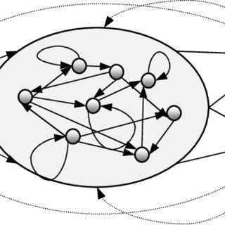 Topology matrix for the best ESN for Belo Jardim data set