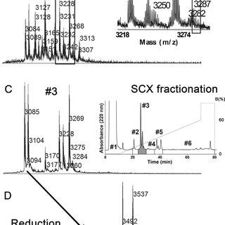 (PDF) A high-throughput peptidomic strategy to decipher