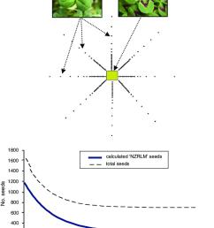 quantification of gene flow in white clover under australian field download scientific diagram [ 850 x 1169 Pixel ]