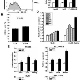 (PDF) Transient mTOR Inhibition Facilitates Continuous