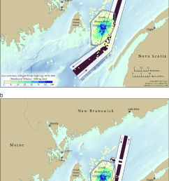 north atlantic right whale density in the grand manan basin critical habitat bay of fundy [ 850 x 1473 Pixel ]