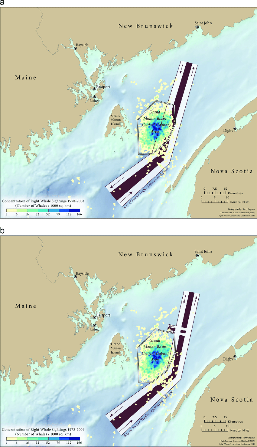 medium resolution of north atlantic right whale density in the grand manan basin critical habitat bay of fundy