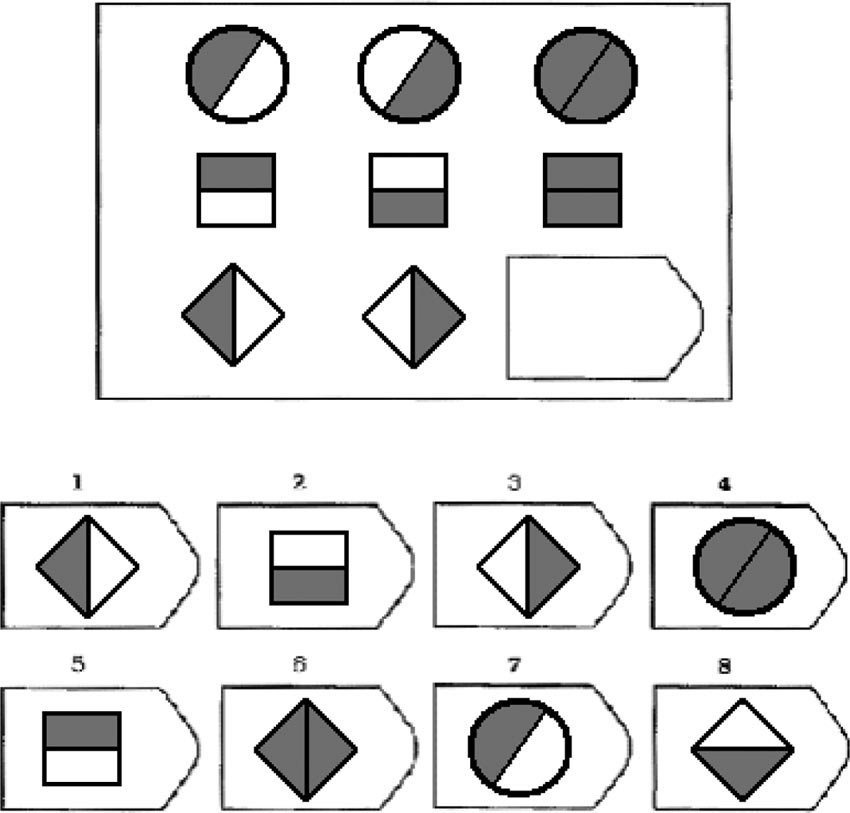 Sample item from Raven's Advanced Progressive Matrices