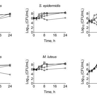 (PDF) Targeting Bacillus cereus cells: increasing