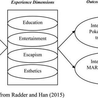 Proposed conceptual framework for future studies