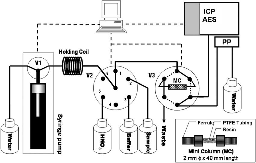 Manifold of Auto-Pret AES System. MC: mini-column; PP: ICP