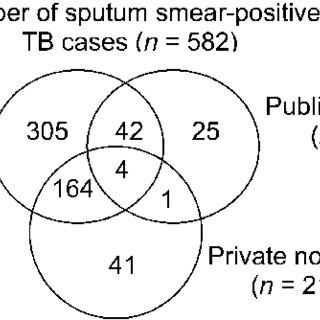 (PDF) Estimating the tuberculosis burden in resource