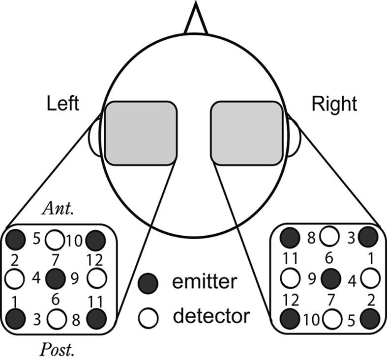 Arrangement of NIRS recording probes. A schematic top view