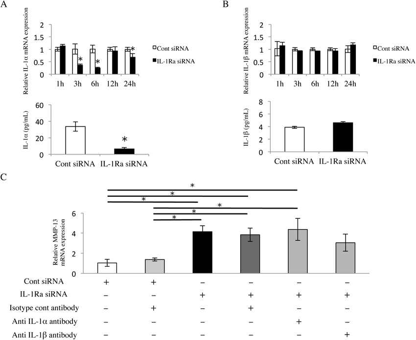 Neutralization of IL-1 does not affect MMP-13 up