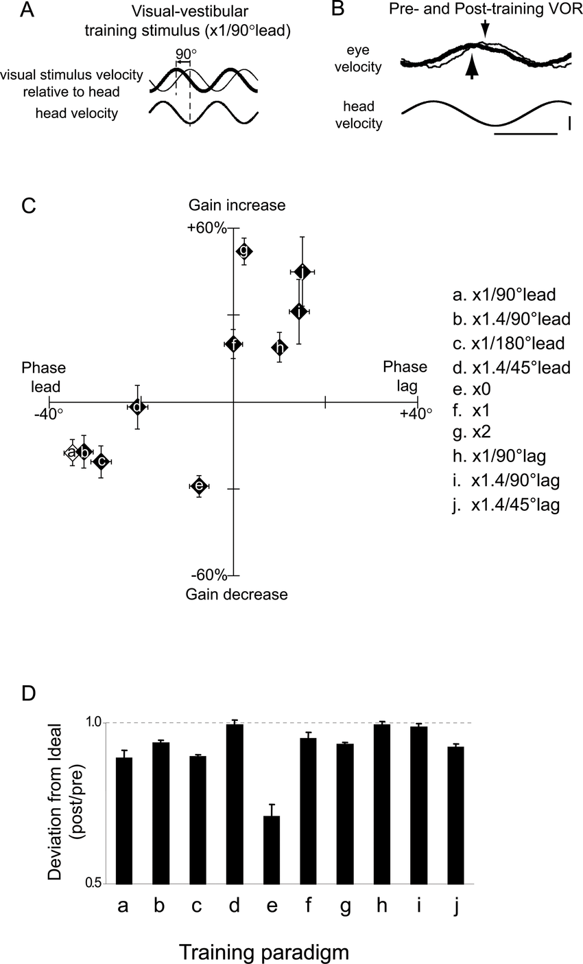 Changes in VOR gain and phase during motor learning in