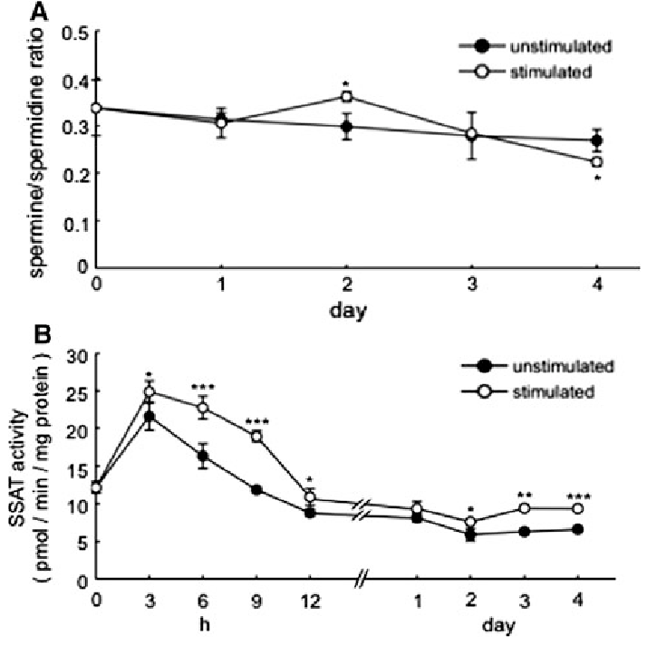 Changes in spermine/spermidine ratios and SSAT activity of