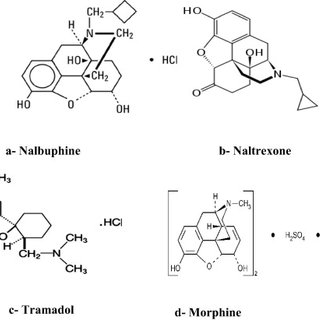 (PDF) Spectrophotometric determination of some analgesic