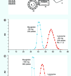 countercurrent chromatography purification of myoglobin and lyzozyme download scientific diagram [ 850 x 1398 Pixel ]