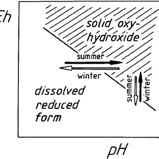 Schematic description of the prevalence of pH variations