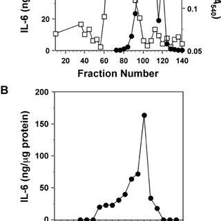 (PDF) Helicobacter pylori Heat Shock Protein 60 Mediates