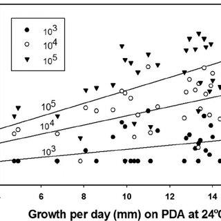 Brown rot lesion development on wound-inoculated nectarine