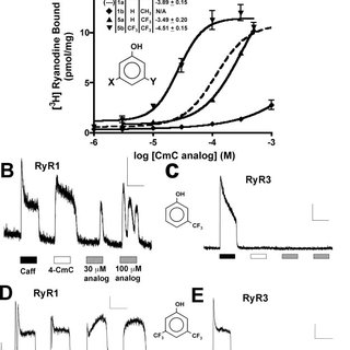 A, concentration dependence of RyR1 activation by 4-CmC