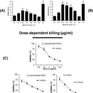 (A) The cell death and cell lyses were determined LDH
