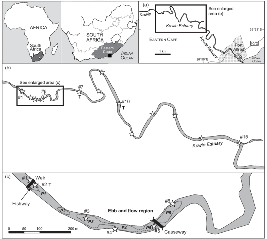 Map of South Africa showing the study site location in the