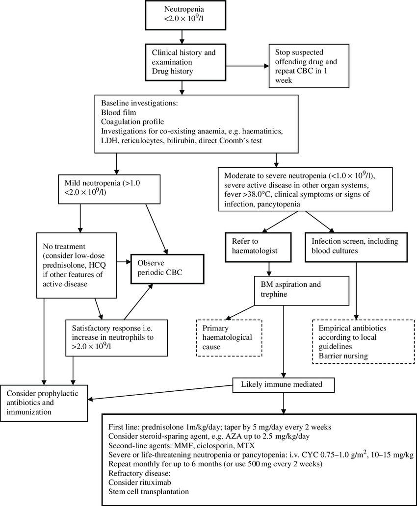 hight resolution of flow chart for the management of neutropenia in sle cbc complete blood count