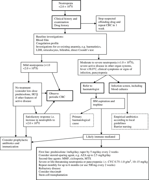 small resolution of flow chart for the management of neutropenia in sle cbc complete blood count