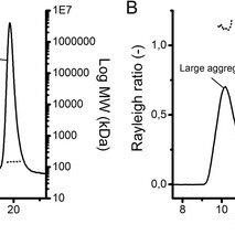 (PDF) Direct analysis of mAb aggregates in mammalian cell