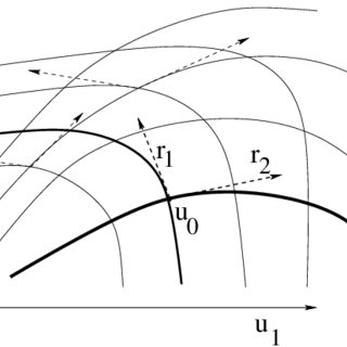 Left: the exact solution to a Riemann problem. Right: a