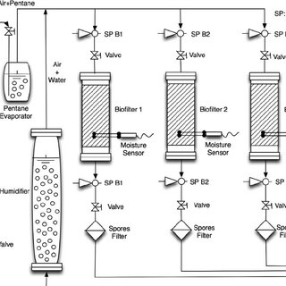 (PDF) Temperature and moisture effect on spore emission in