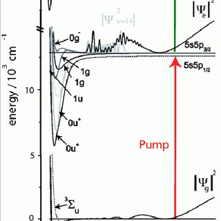 Experimental (black) and theoretical (grey) pump-probe