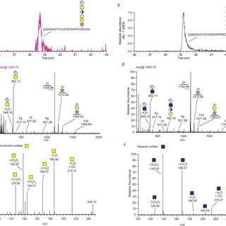 (PDF) Site-specific identification of heparan and
