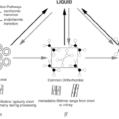 Fat Structure Diagram Electric Over Hydraulic Pump Wiring Polymorphic Forms Of Crystals Including The Possible Transitions Subcell Packing Structures
