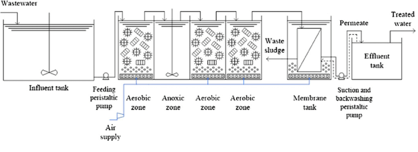 Diagram of the bench-scale pure moving bed biofilm reactor