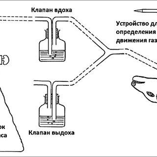 Block diagram describing the peripheral chemoreceptor