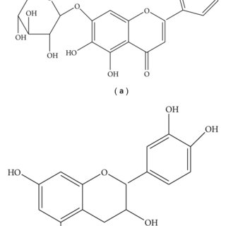 The central role of arachidonic acid in the pro