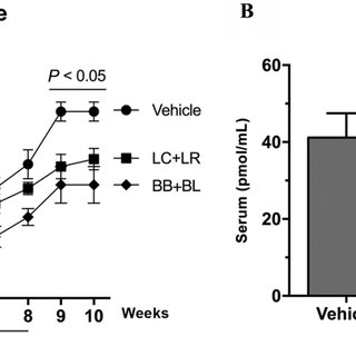Impact of Weaning Transition on Piglet Gut Microbiota and