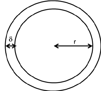 Figure B1. The schema of a protocell with a membrane of