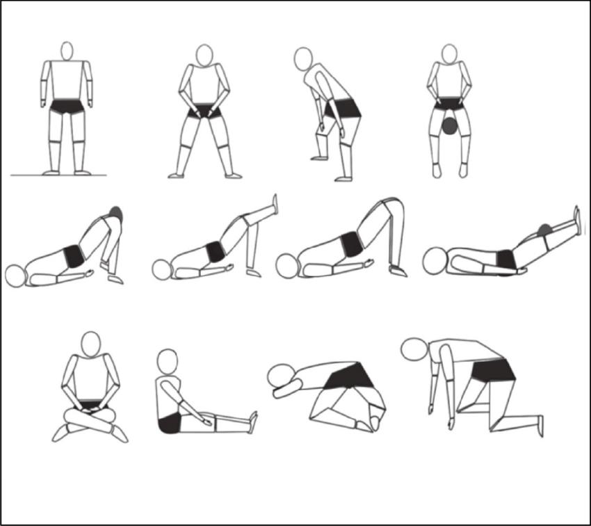 Pelvic Floor Muscle Exercises (By Artur Paulo Caetano