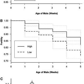Comparison of the alternative DSB repair pathways (HR-h