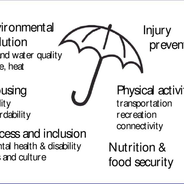 Social and Environmental Determinants of Health 21