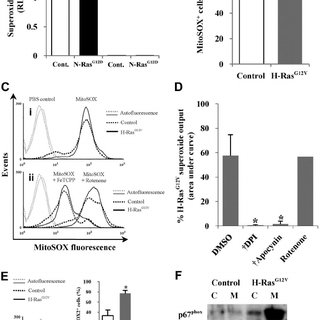 (PDF) Ras-induced reactive oxygen species promote growth