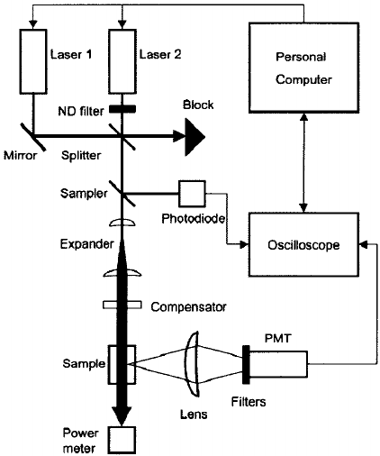 Schematic of the double-pulse laser fluorometer used to