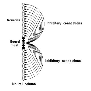 An example of the pattern of initial neural activity and