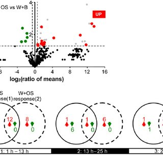 Preprocessing of GCxGC-ToFMS data. A, Two-dimensional