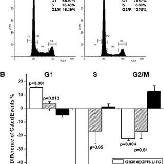 Figure W1. Immunohistochemical analysis of Ki67 in