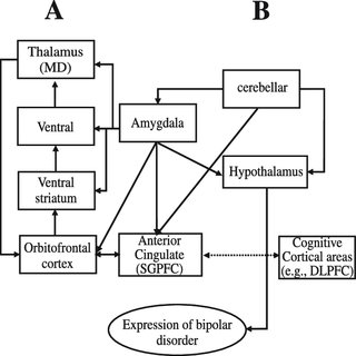 (PDF) Mitochondrial Dysfunction and Psychiatric Disorders